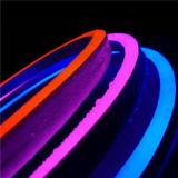 LED 유연한 지구 빛 AC 220V SMD 5050 RGB LED 네온 코드 LED 관 60LED IP68는 밧줄 끈 램프를 방수 처리한다