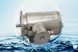 IEC и NEMA стандартный электродвигатель из нержавеющей стали 56C, B35, B14