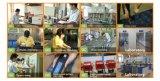 UPS/Alarm/Lighting를 위한 중국 납축 전지 12V4ah,