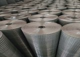 Высокое качество оцинкованной сварной проволочной сеткой 25мм * 25мм панели 2 мм с низкой цене
