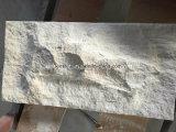 Calcare naturale di beige della crema del Mocha delle mattonelle della parete delle mattonelle di pavimento di prezzi bassi