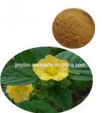 5:1 выдержки Cordifolia Sida потери веса алкалоидов 10%