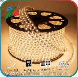 Ce 10mm 5050 indicatore luminoso di striscia caldo dell'indicatore luminoso bianco 110V dell'indicatore luminoso di striscia di SMD