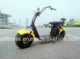 La Chine Electric Motorcycle finement traitées le plus rapide