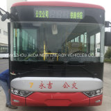 Bus elettrico perfetto di disegno 10m per uso pubblico