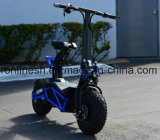 2000W, 48V Lithium Electric Scooter/off Road Folded and Scooter/E Miniums Scooter/Dirt Electrical Scooter with Oversized All Terrain Fat Tire Ce/ECE