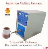 Smeltende Oven van de Inductie van de Smeltoven van het metaal 1-3kg de Mini