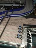 Tablilla Hairise Top Transportador de cadena sistema utilizado en la fábrica de bebidas