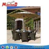 一定の藤の食事および屋外の柳細工の家具を食事するベストセラーの庭かレストラン
