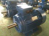 Три фазы электродвигателя, Y2 электродвигателя, мотор переменного тока