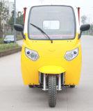 2015 최신 판매 모터 세발자전거 3 바퀴 기관자전차