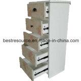 La mélamine auxquels sont confrontés les panneaux de particules Armoire de stockage avec 5 tiroirs