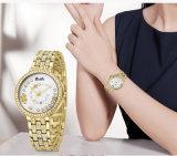 Het Horloge van Belbi keurt goed OEM het Embleem op Professionele die Ontwerper kan zijn van de Riemen van het Geval van het Horloge van het Gezicht van de Wijzerplaat van het Horloge de Achter in China wordt gemaakt