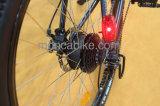 方法後部ラック李電池36V 48Vが付いている都市電気スクーターのE自転車の電気バイク