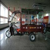 自動人力車の貨物Trike 3の荷車引きモーター三輪車