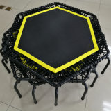 Ginásio comercial único Bungee trampolim