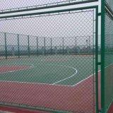 Загородка сада ячеистой сети обеспеченностью PVC звена цепи Coated