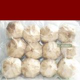 Comida saudável Alho Preto rico em vitaminas e a atividade da SOD 12xénon/Bag10.46 USD/Bag