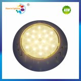 Expoxy LED de lleno en la pared de la luz de la piscina (HX-WH260-252P)