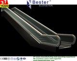 Scala mobile parallela con punti di alluminio/d'acciaio per il cinema della stazione di metropolitana