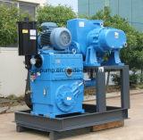 Pompe à piston rotatif pour la production de cristallisation de vide