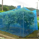 5.5m 폭 정원을%s 반대로 곤충 그물 온실 그물세공
