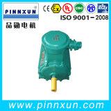 Trifásico Motor Atex baratos fabricados na China