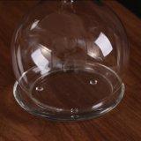 Decoración casera de cristal modificada para requisitos particulares del paisaje del tarro del tarro de cristal de cristal micro del regalo