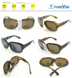 Fqp16383 Nouvelle conception de lunettes de soleil de bonne qualité avec lentille bifocal