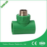 Feito na China Factory Supply PPR End Cap (PP-R Pipes & Fittings FOR COLD / HOT WATER)