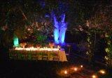 Laser imperméable à l'eau de jardin allumant Noël extérieur de projecteur de laser