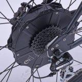 Populäres Lithium-elektrisches Fahrrad des Berg2018