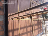 Revestimiento impermeable cómodo de la pared exterior de Eco WPC