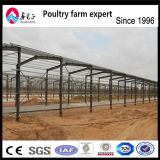 Peb 강철 구조물 헛간과 가금 헛간 암소와 닭