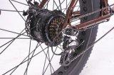 bicicletta elettrica di potere classico del litio 48V/500W