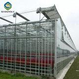 Дешевые Multi-Span сельскохозяйственных выбросов парниковых газов из стекла для томатов