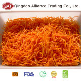 Neues Getreide-frische vollständige Karotte mit gutem Preis