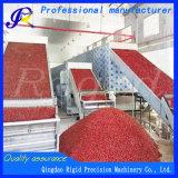 Asciugatrice dei grandi della cinghia del pepe peperoncini rossi rossi a più strati dell'essiccatore