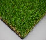 Una hierba más verdadera para el Es que ajardina