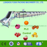 Niveladora de la fruta estándar Ce/ISO9001