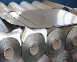 Feuille de graphite avec métal perforé à tenon (SS, CS, Ni)