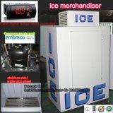 De Bak van de Opslag van het ijs met de Compressor van Italië Embraco