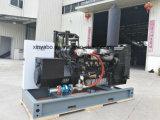 500KW 300kw 200kw 100kw a 50kw 30kw 10kw homologado CE Biogas biomasa de Gas Natural Gas Gas generador eléctrico
