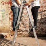 De Twee doelen dienende Ladder van de Ladder van de dubbel-functie
