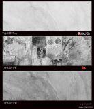 300X450 3D Inkjet die de Ceramische Tegels van de Muur voor Badkamers (3060005) afdrukken