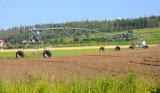 Irrigazione concentrare del perno che spruzza sistema, tipo dell'indicatore/spruzzatore irrigazione del Centro-Perno
