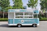 Kosteneffektiver Entwurfs-elektrische Fahrzeug-Nahrungsmittelkiosk-Lebesmittelanschaffung Van