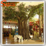 Artificial Ficus Tree for Indoor Decoration