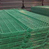塗られた電流を通された/PVCは金網のよい製造者を溶接した