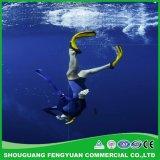 Piscines, les poissons des pools de revêtement Revêtement sympa Eco